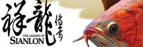 黄石水族批发市场 黄石水族馆 黄石龙鱼